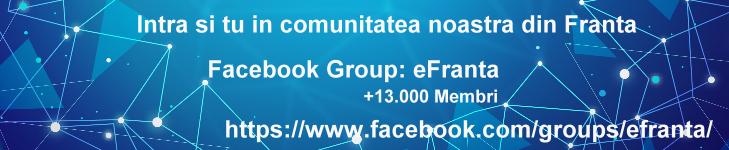 Marketing in comunitatea romaneasca din Franta - EtnoMarketing